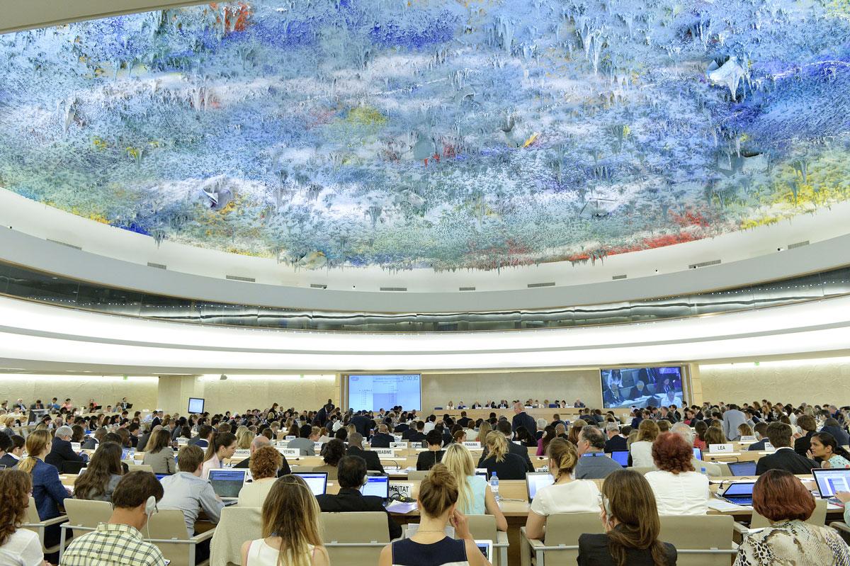 Estados instan a Suecia en la ONU a respetar garantías procesales