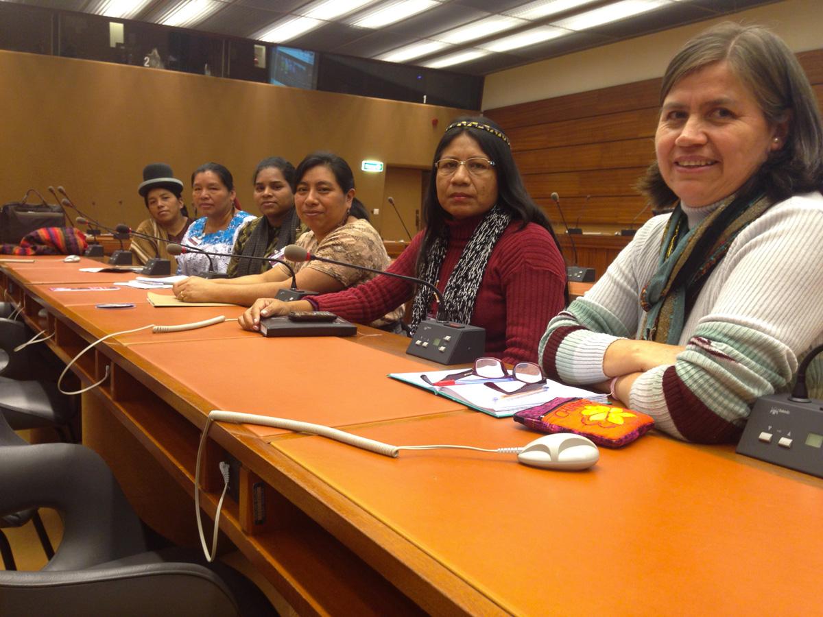 Mujeres indígenas denuncian en la ONU falta de protección del Estado frente a empresas