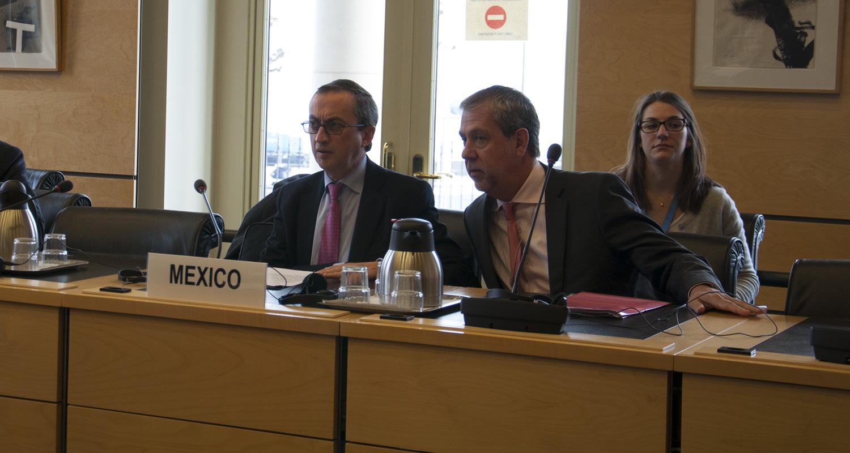 México reconoce ante ONU insuficiencias en sus medidas contra las desapariciones forzadas