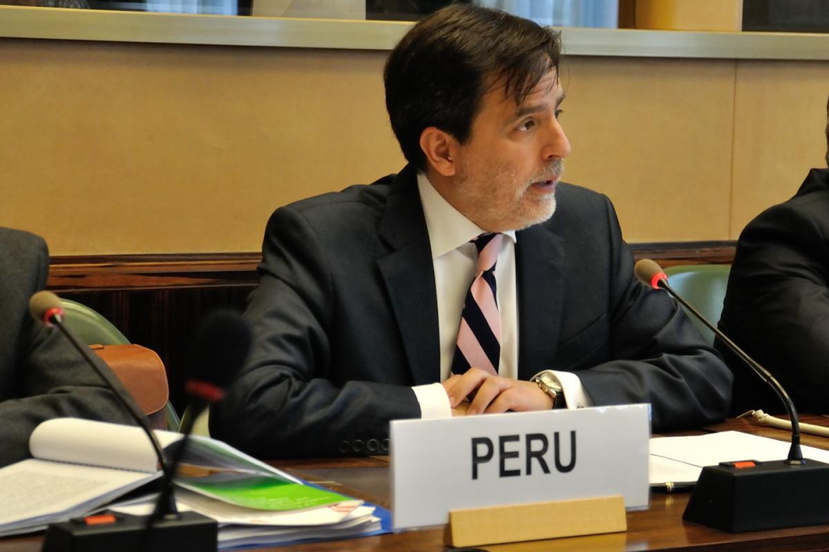 Comité de la ONU recomienda a Perú elaborar nueva legislación migratoria