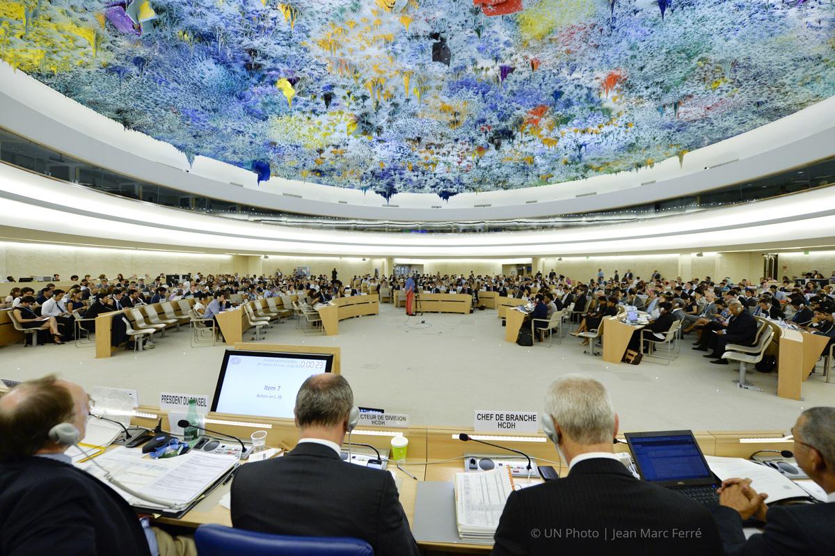 Designan relator especial sobre derecho a la privacidad en la era digital