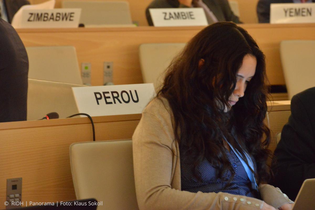 ONU: adoptan resolución para reglamentar uso de armas de fuego por civiles