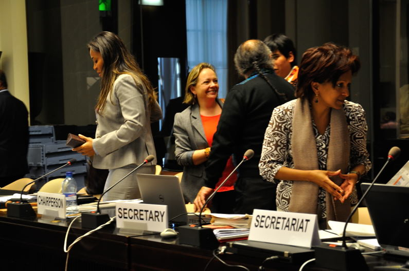 CERD_Colombia_13