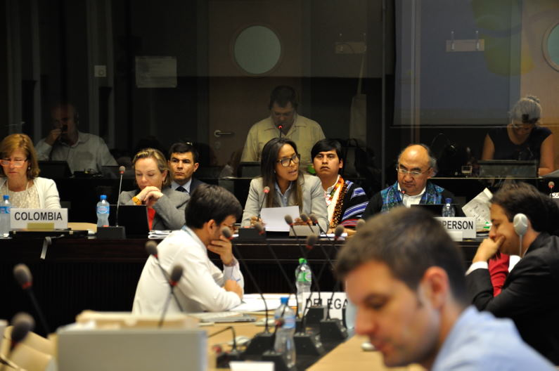 CERD_Colombia_5