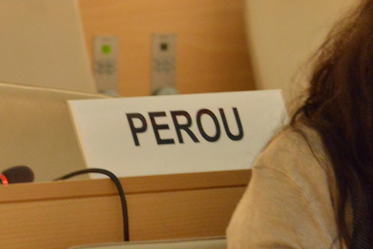ONU recomienda a Perú prevenir abuso infantil y reducir embarazos juveniles