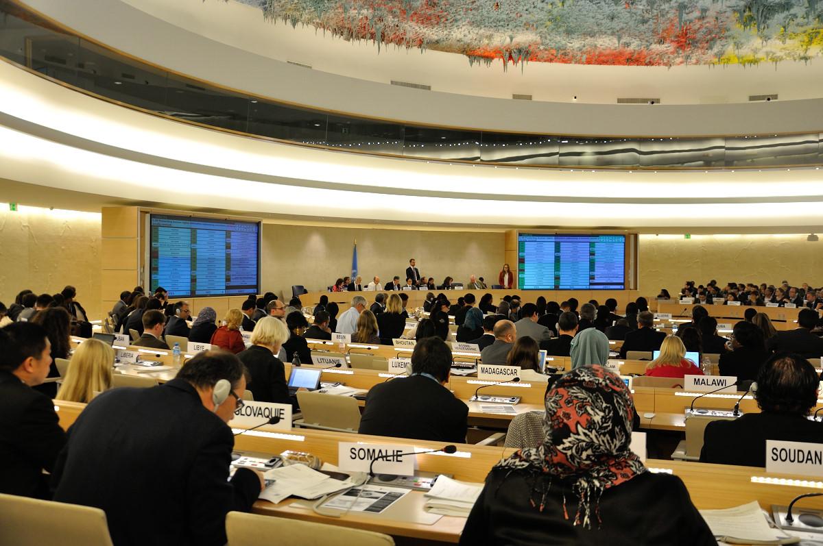 """Consejo unge a las """"manifestaciones pacíficas"""" como un derecho humano inalienable"""