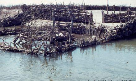 La ONU reclama por los derechos humanos de las víctimas del robo de un río en Argentina