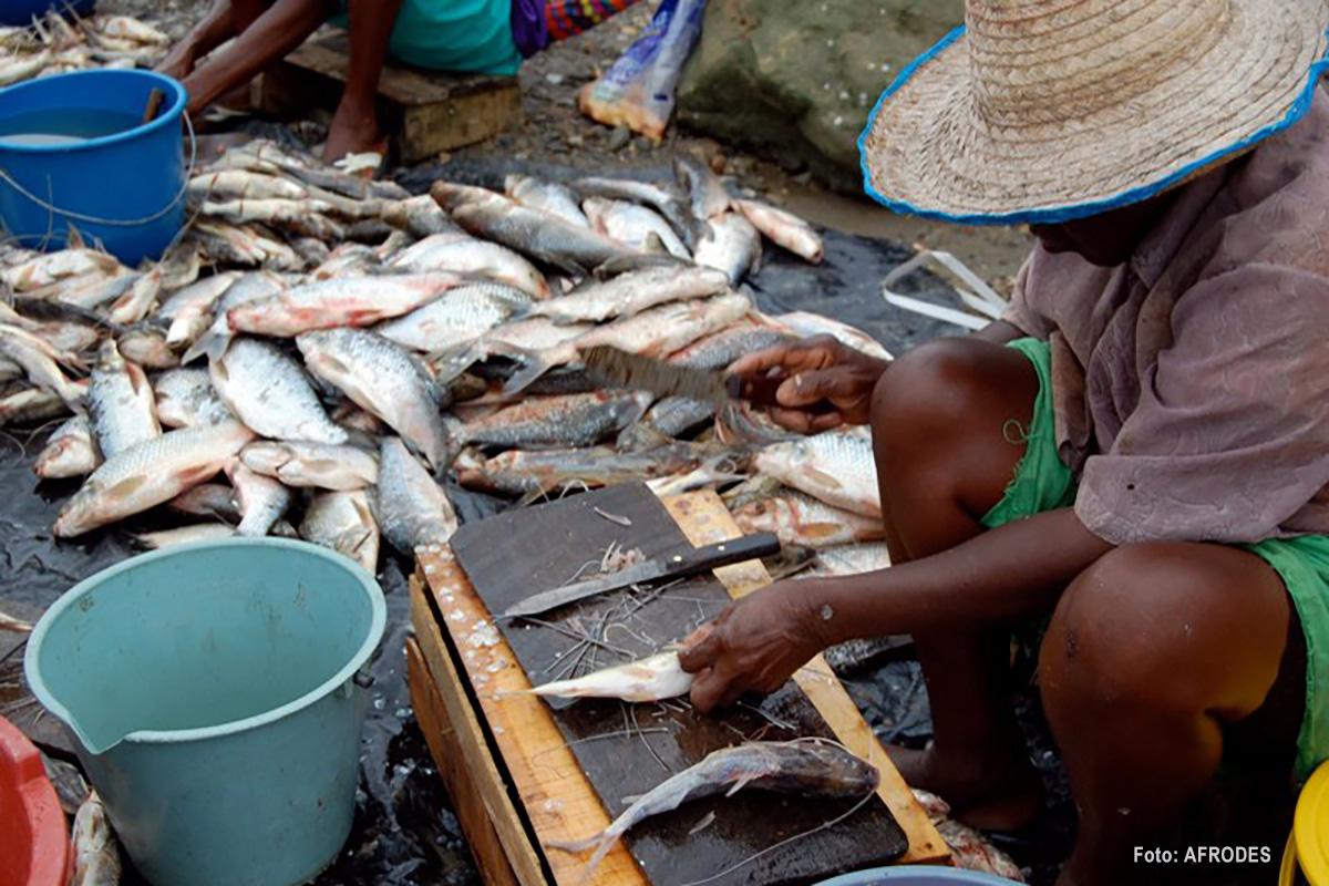 Pescadora. Foto: AFRODES